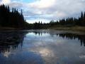 Birch Island/Jason Foster
