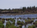Partridge Bay/©Ducks Unlimited Canada