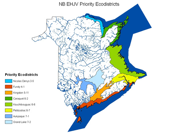 NB EHJV Priority Ecodistricts