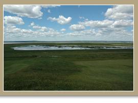 Marais endigué de Tantramar, Nouveau-Brunswick/Bruce Pollard