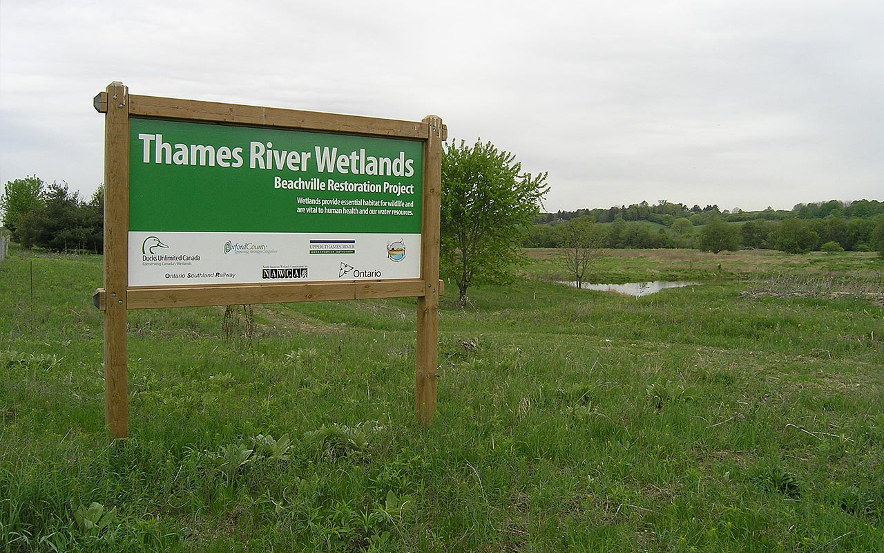 Thames River Wetland Restoration — Ducks Unlimited Canada
