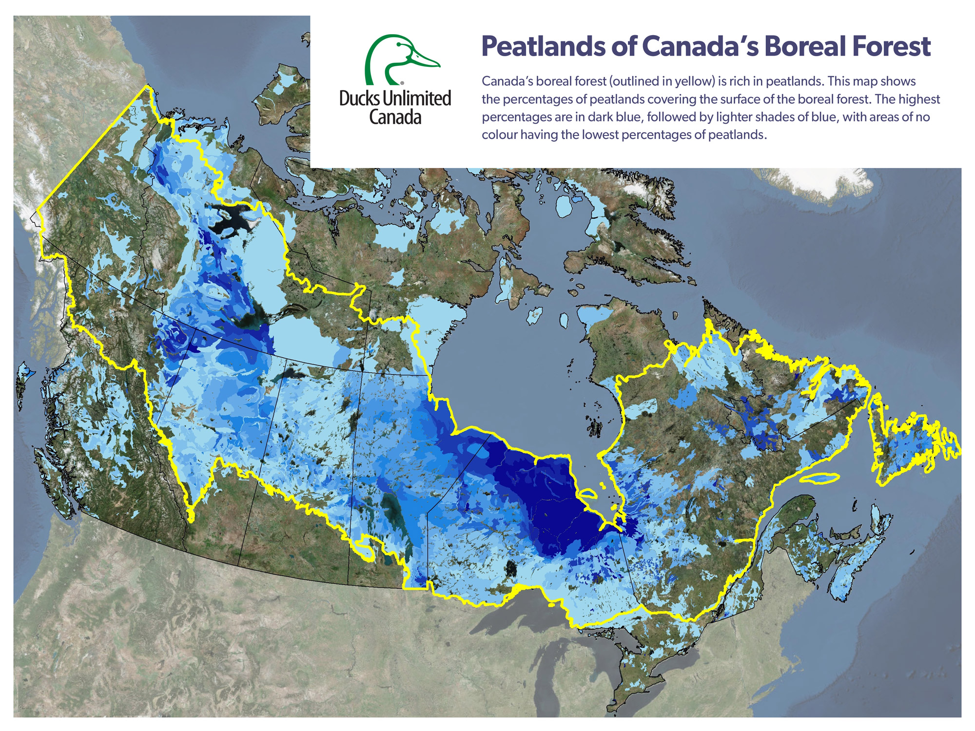 Canada's Peatlands: One of the World's Largest Carbon Sinks