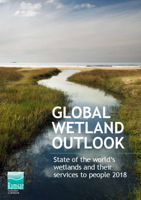 Wetlands – World's Most Valuable Ecosystem are Disappearing Three Times Faster than Forests, warns new report