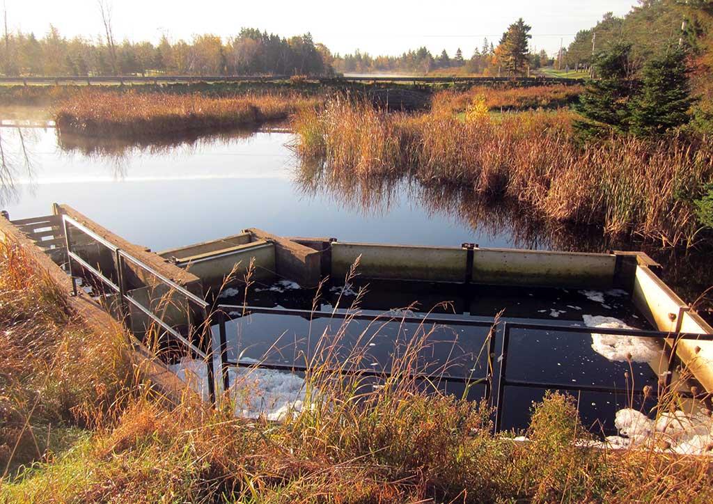 Johnston's River Project, Prince Edward Island